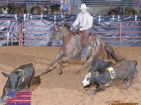 equine-05i3045