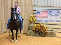 2018 DRTPA Finals - #1 High-Point Rider