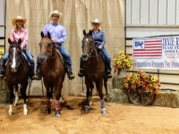 2018 DRTPA Finals - 100 Ride Penning Club - 1st Place